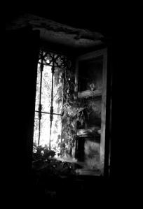 04-bert-p.t-finestra